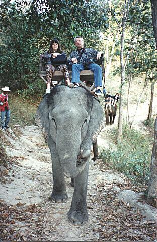 L'homme et l'animal sauvage... 20101126133245-21d064d8